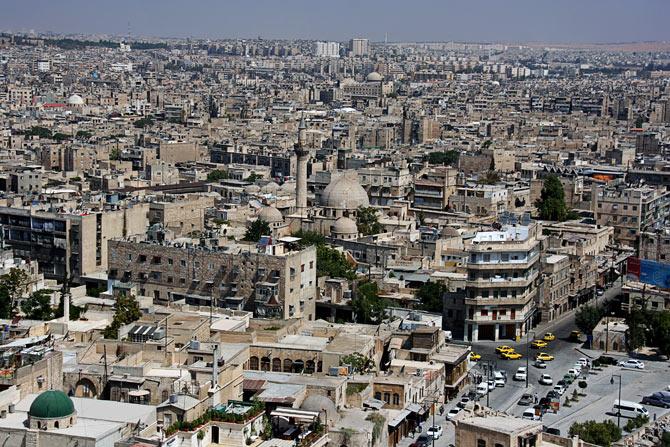 Вид Алеппо