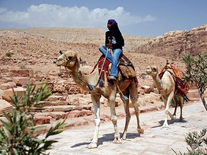Бедуин верхом на верблюде, Петра