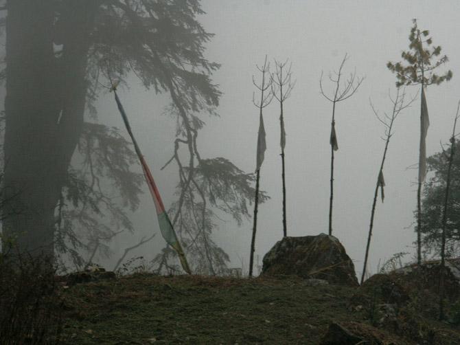 Туман в Тиманге