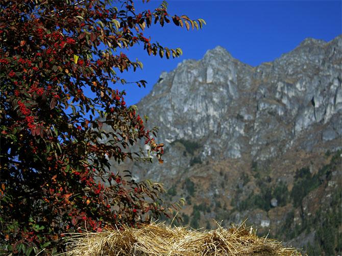 Осень в Гималаях