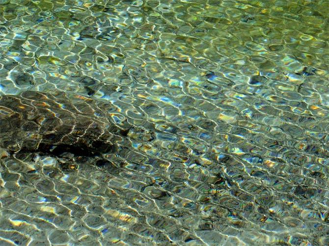 Рябь на воде