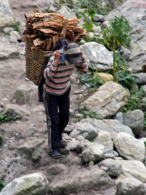 Грузчик с дровами, трек вокруг Аннапурны