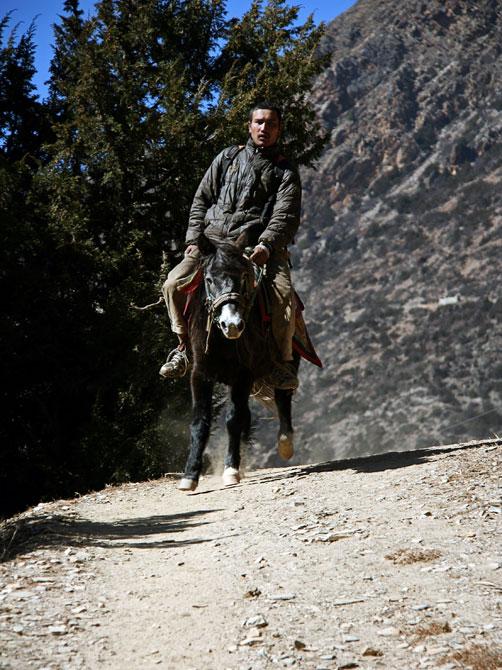 Всадник - трек вокруг Аннапурны, Непал, Гималаи