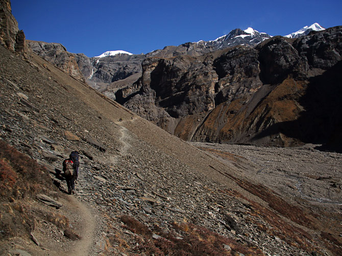 Тропа к Торонг Феди - трек вокруг Аннапурны, Непал, Гималаи