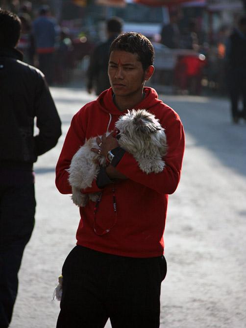 Молодой непалец с собачкой в Покхаре, Непал