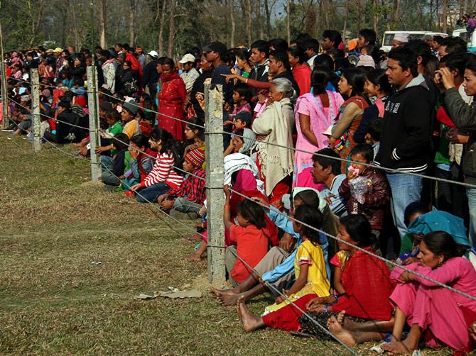 """Толпа зрителей, фестиваль """"Слоновьи бега"""", Читван, Непал"""