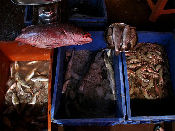 Рыбный рынок в Мапсе