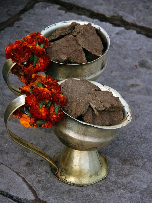 Чаши с коровьим навозом, Варанаси, Индия