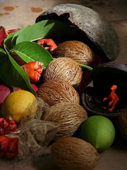 Композиция с мохнатыми плодами, Индонезия