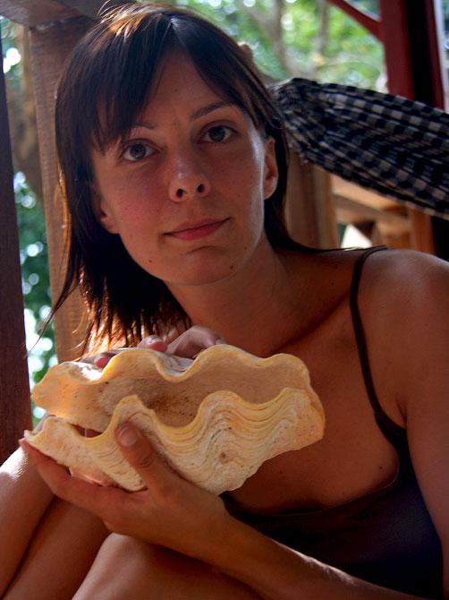 Staska с большой раковиной, остров Ве, Индонезия