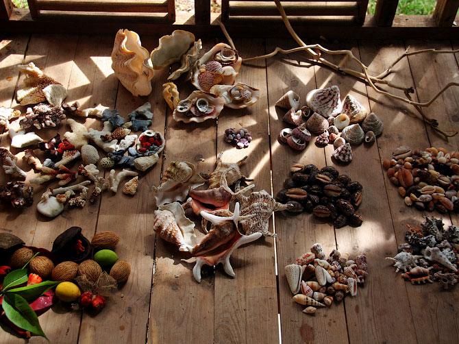 Ракушки острова Ве, Индонезия
