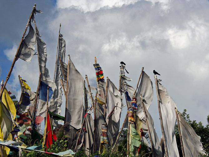 Буддистские флаги на холмах возле Ревалсара, Индия