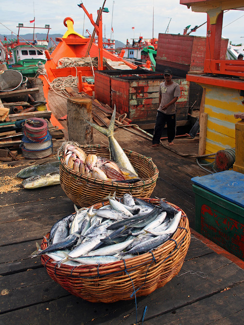 Улов рыбаков в порту Банда Аче, Суматра, Индонезия