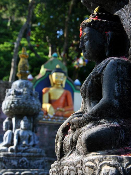 Будды у Сваямбу, Катманду, Непал