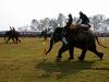 Слоновьи бега в Читване